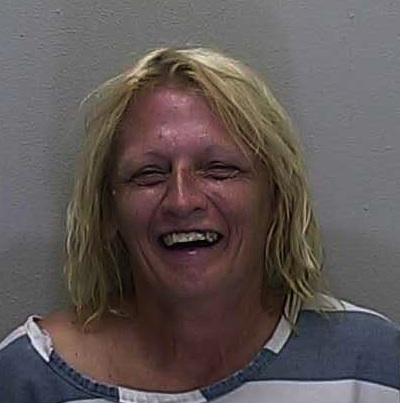 Will County Inmate Search Mugshots